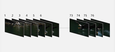 Image illustrating 76 frames of continuous shooting