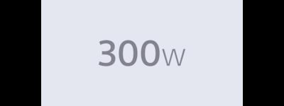 300W icon