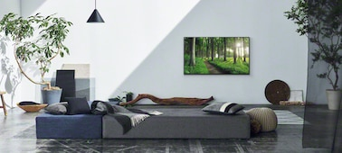 Image of living room scene showing Living Decor concept