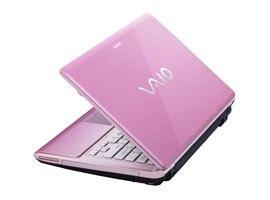 VPCCW16FG/P-VAIO™ Laptops & Computers-CW Series