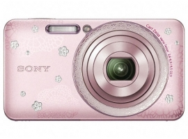 DSC-W570D/P-Digital Camera-W Series