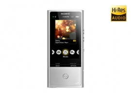 NW-ZX100-Walkman® Digital Media Players-ZX Series